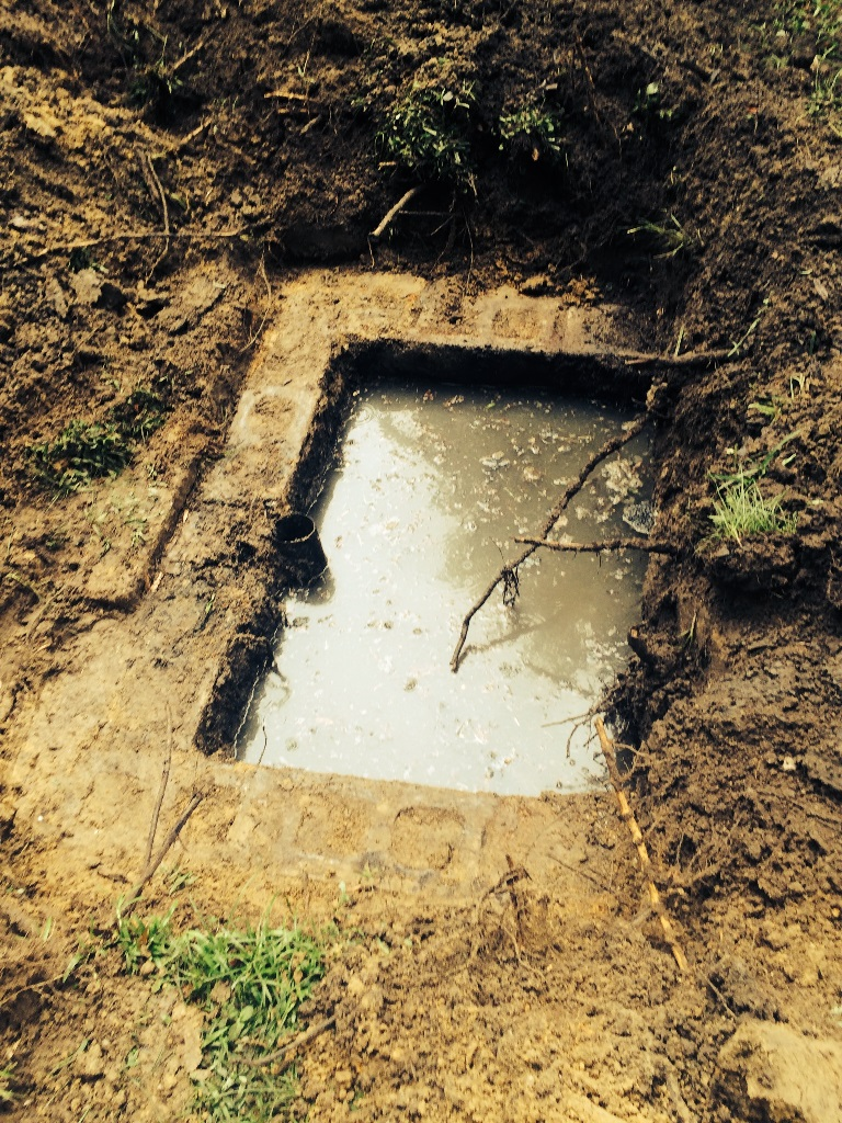 septic tank issues at home in Pensacola