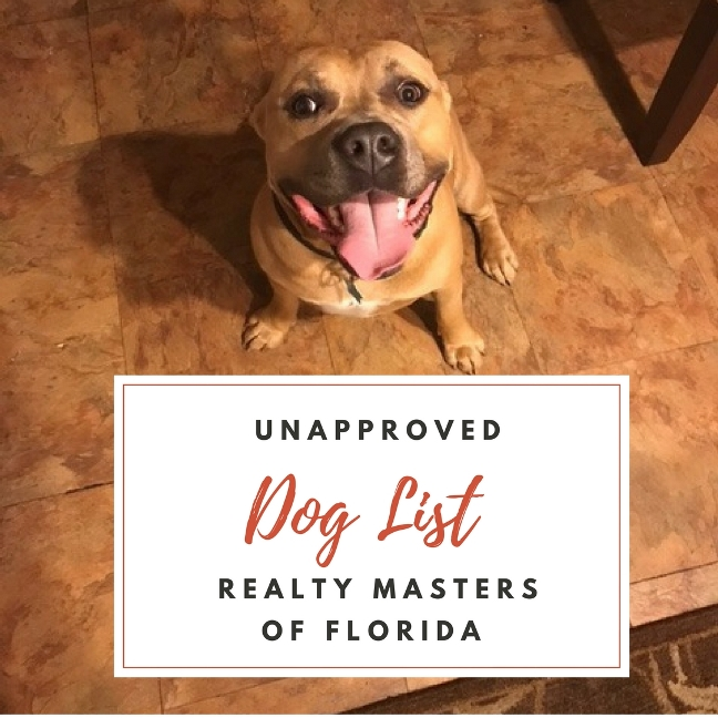 aggressive-breed-dog-list-florida-rentals